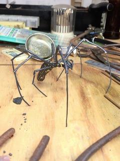 自在置物 オオジョロウグモ